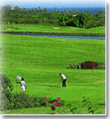 Golf at Kiahuna Course
